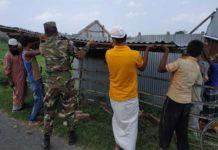 army amfan news